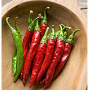 PEPPER, Red Rocket Chile